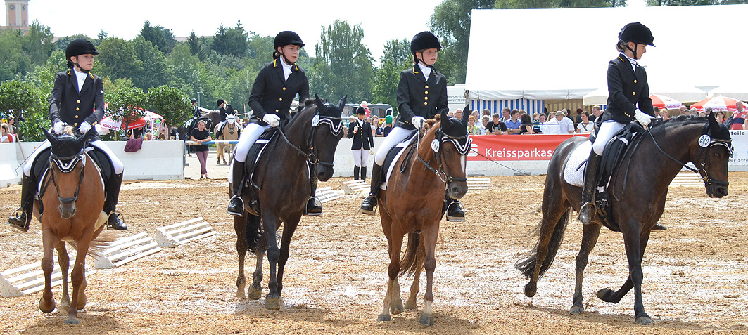 2014 Pony-Quadrille